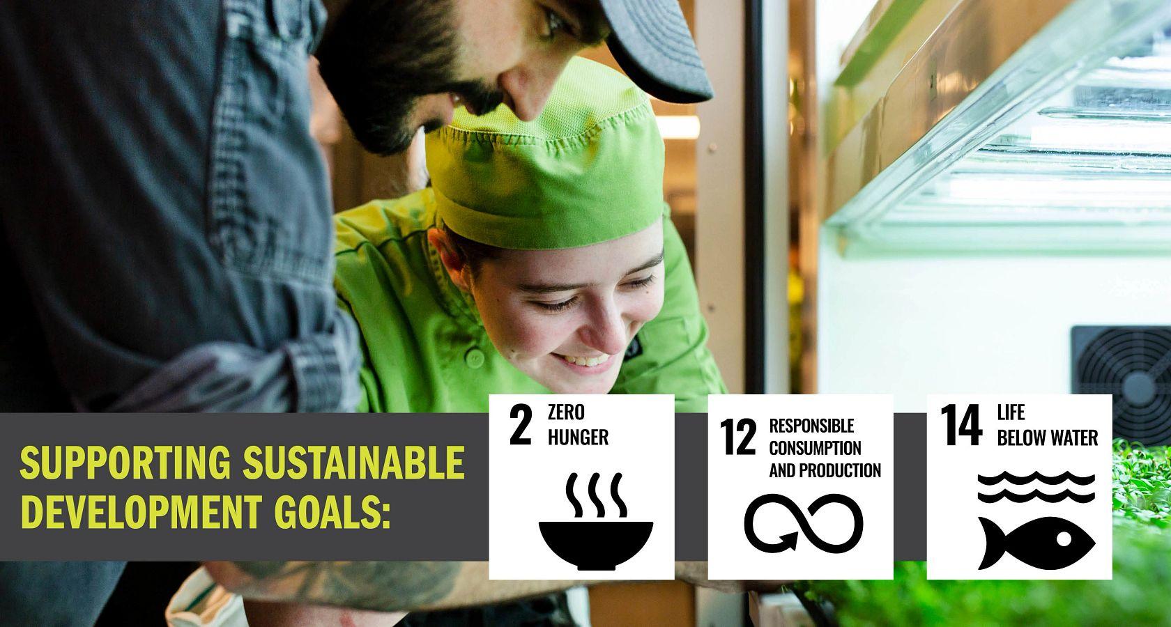 Sustainability-Food.jpg