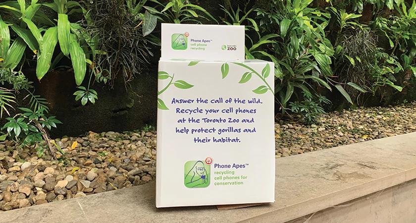 Phone Apes Recycling Program donation box