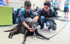 picture of two Centennial College students petting a dog at a paws your stress event