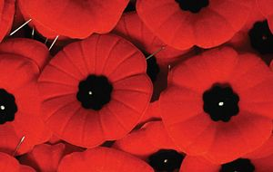 Picture of Remembrance Day Poppy Pins